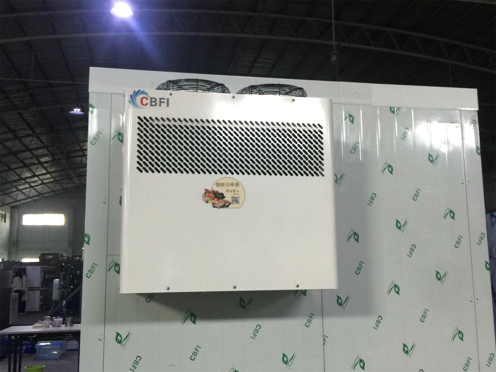 CBFI room parrot ice machine long-term-use for freezingg