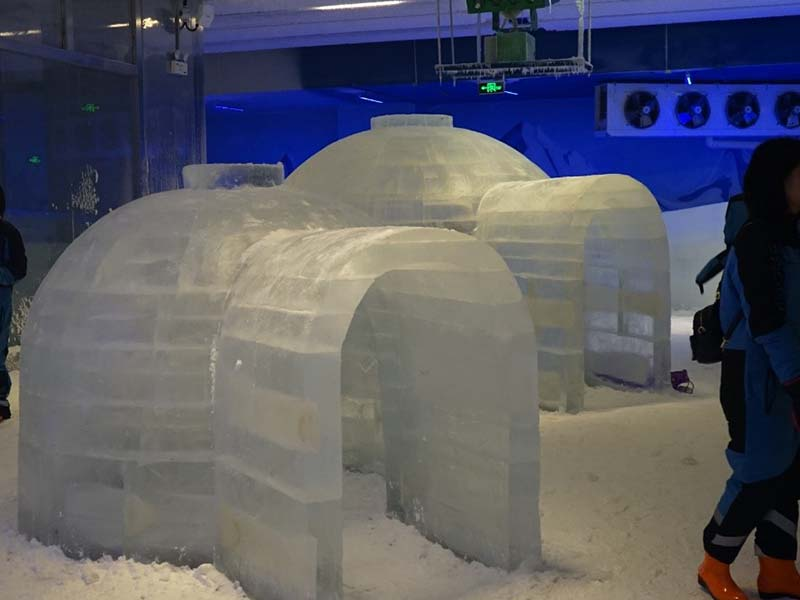 CBFI clean cold room units in china for ice sculpture-12