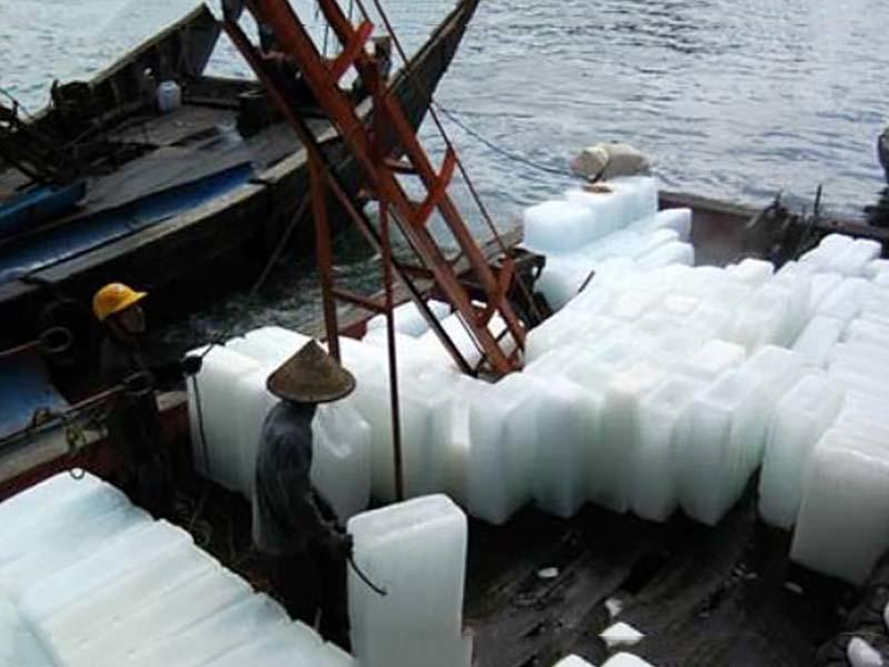 professional tubular ice maker bulk production for cooling