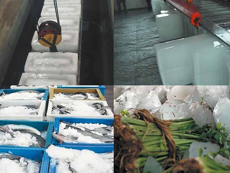 CBFI small ice machine bulk production for summer-2