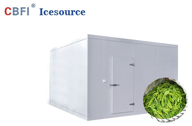 CBFI long-term used cold storage container range for vegetable storage-1