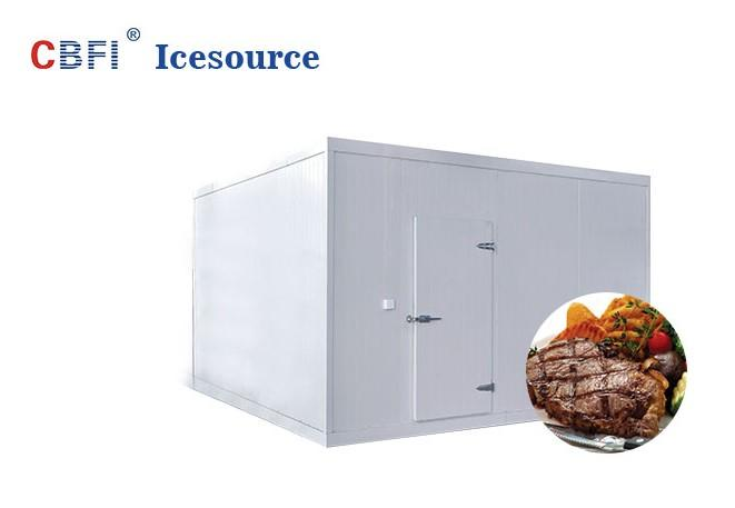 professional frozen cold room for meat and fish for wholesale for freezing