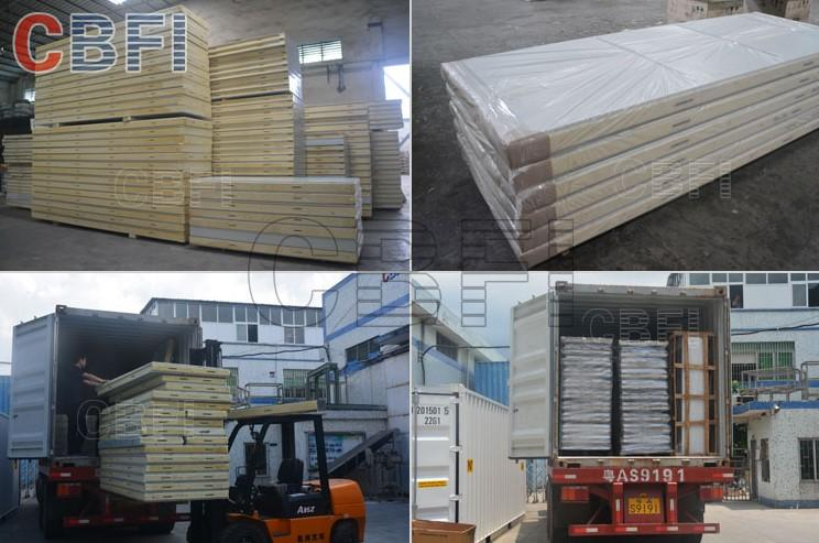 CBFI high-quality container cold room bulk production for fruit storage