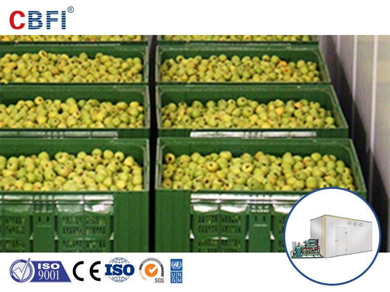 Imported food is inseparable from liquid nitrogen refrigeration technology and cold chain logistics