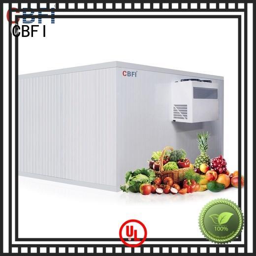 CBFI vegetables vegetable cold storage room manufacturer for fruit storage