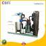 fine- quality flake style ice machine order now for water pretreatment CBFI