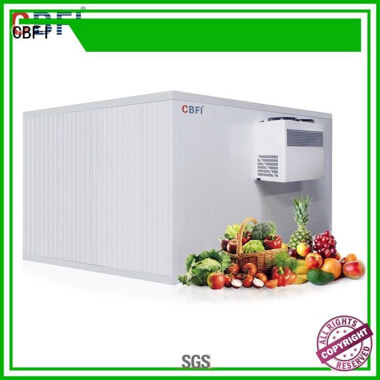 CBFI storage ice maker price manufacturer for fruit storage
