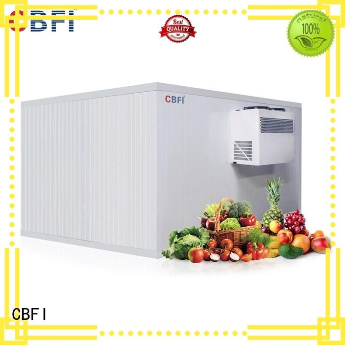 CBFI high reputation ice machine cost newly for fruit storage