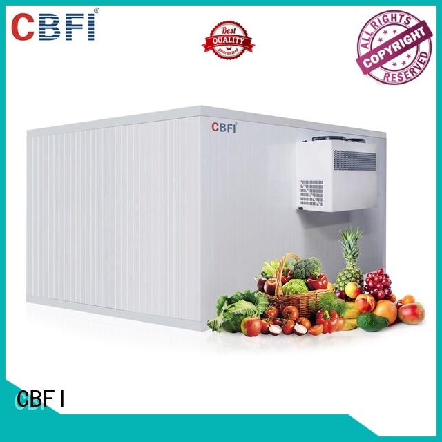CBFI fruits vegetable cold storage room order now for freezing