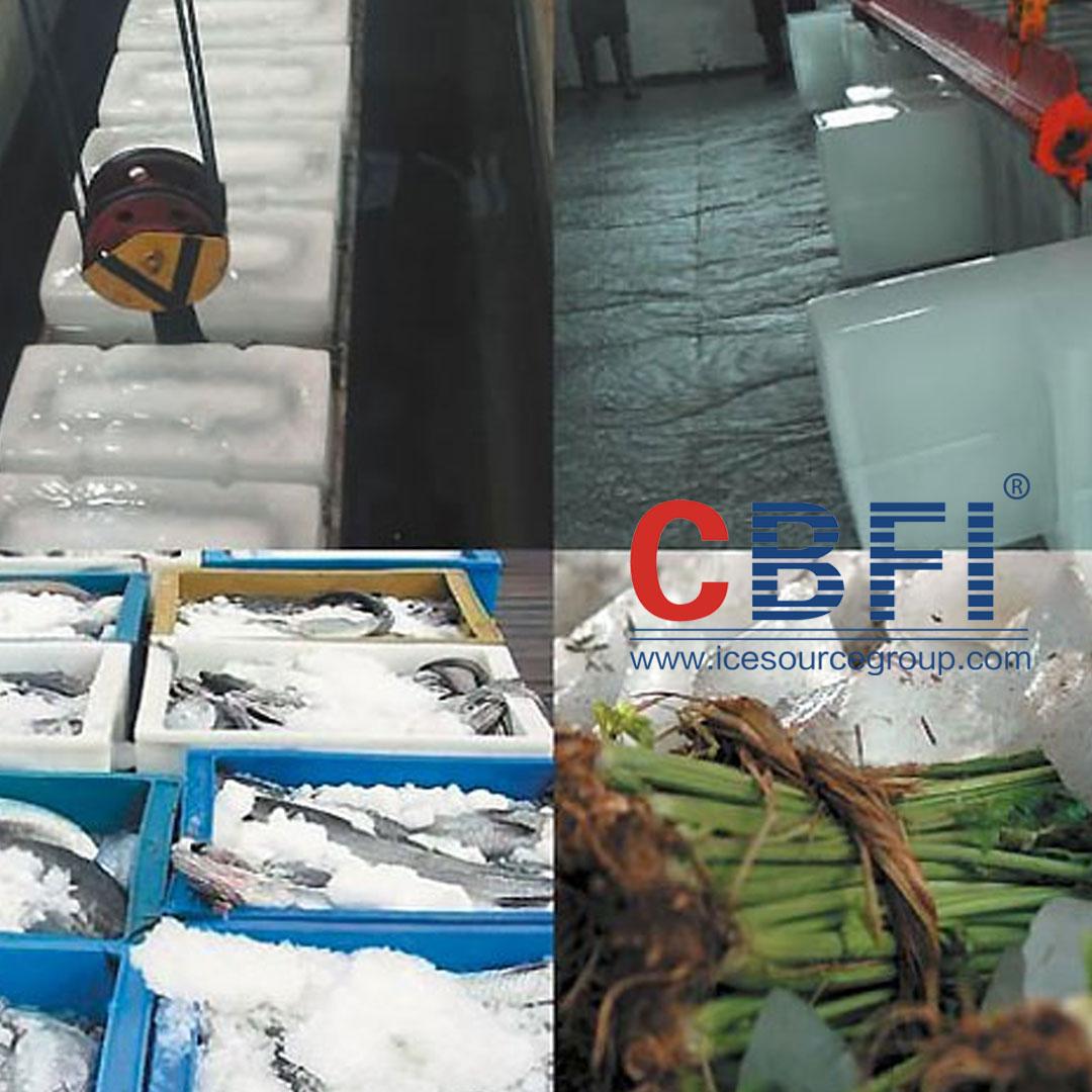news-The Application Field of CBFI Direct-cooling Block Ice Machine-CBFI-img