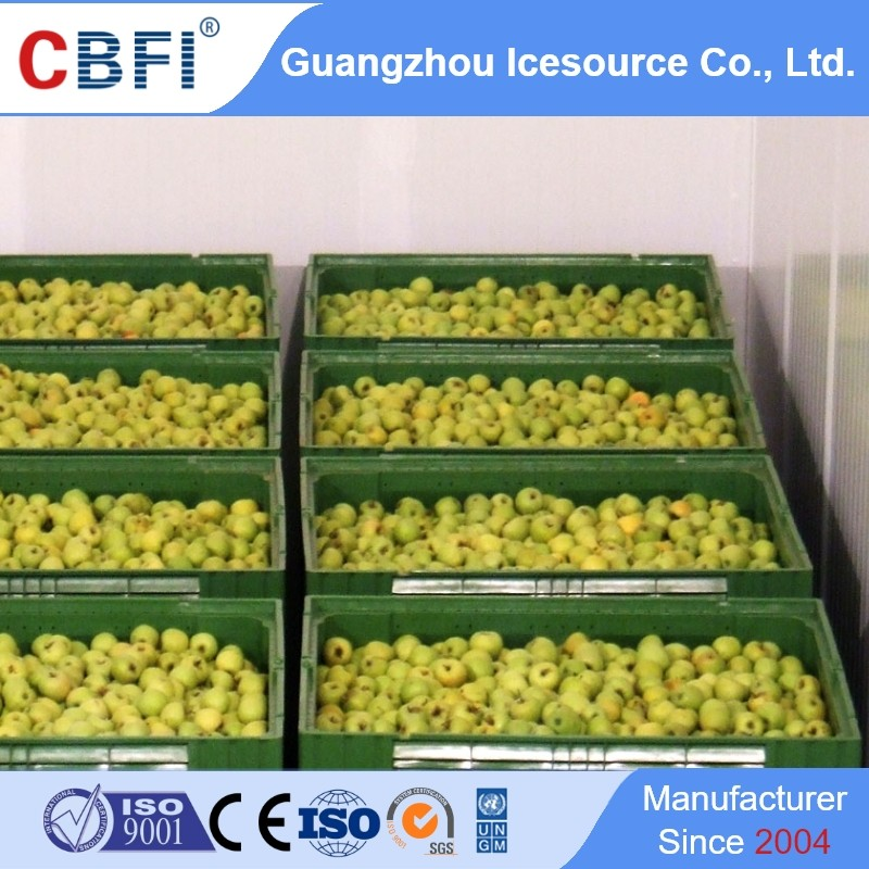 news-Know about Medicine Cold Storage, Constant Temperature Cold Room, Cold Room and Freezer-CBFI-im