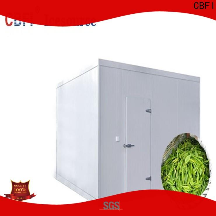 professional container cold room type for freezing