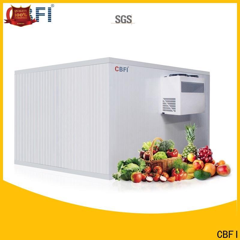 CBFI best ice maker price for vegetable storage