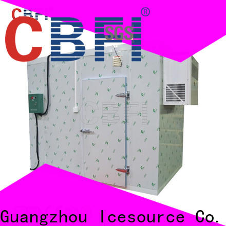 luxury cold room freezer for wholesale for ice bar